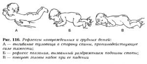 развитие грудного малыша