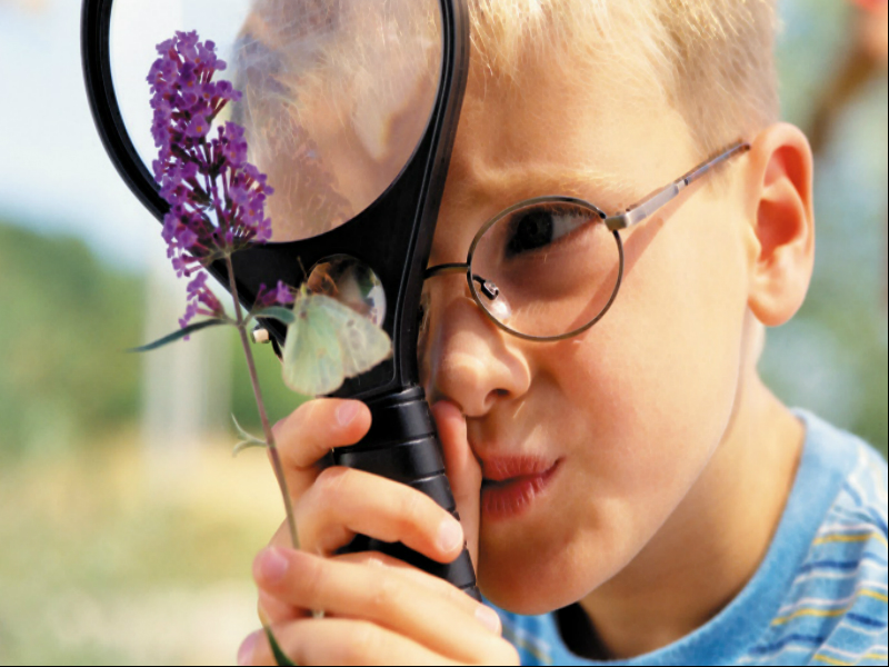 познание это знакомство ребенка с окружающем мире