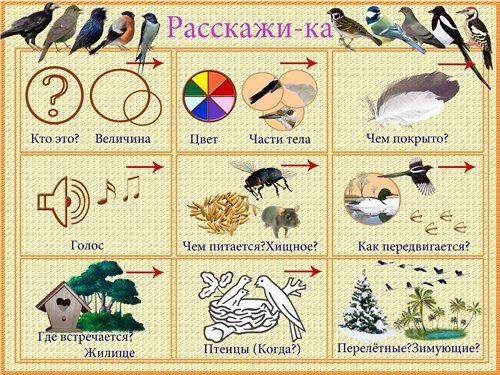 Мнемотаблицы к стихам для дошкольников в картинках 16