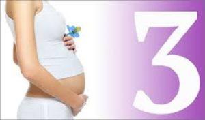 развитие ребёнка до рождения