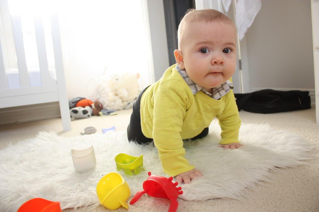 Картинки для ребенка 7 месяцев