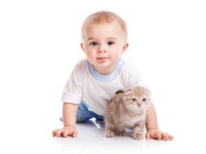 развитие 11 месячного ребенка