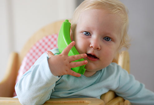 сможете ребенку 1 год и 10 месяцев не говорит дельфиниума