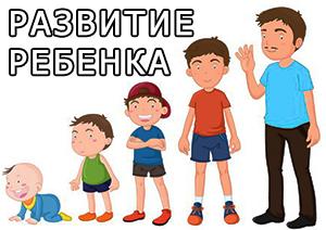 Стадии развития ребенка